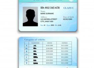 ilustracion-licencia-conducir_1284-5032